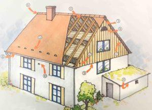 Erklärende Zeichnung, wo am Haus welche Nisthilfen möglich sind